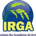 IMG-1-concurso-Instituto-Rio-Grandense-do-Arroz-Irga--150x150