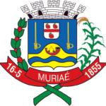 IMG-1-concurso-Prefeitura-Muriaé-150x150