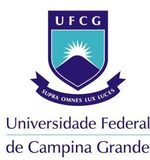 IMG-1-concurso-UFCG