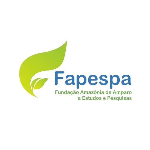 IMG-3-concurso-FAPESPA-edital-inscricoes
